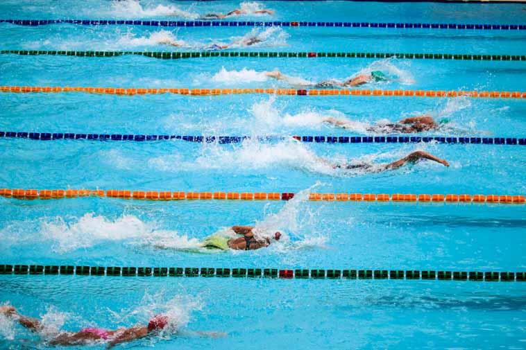 オリンピック競技のフランス語_水泳
